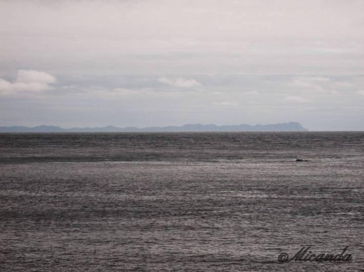白神岬から見える竜飛岬