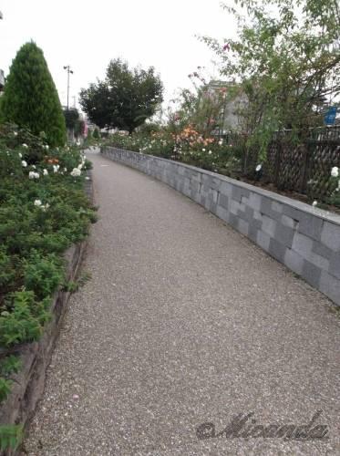 五ケ村堀緑地の遊歩道