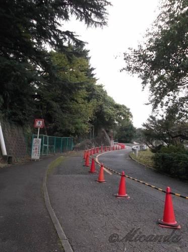 生田緑地ばら苑入口からばら苑に向かう途中にある急な坂