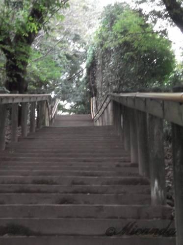 生田緑地ばら苑入口からばら苑に向かう途中にある階段