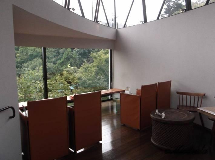 ハウスオブフレーバーズの店内の窓から見える鎌倉山の木々