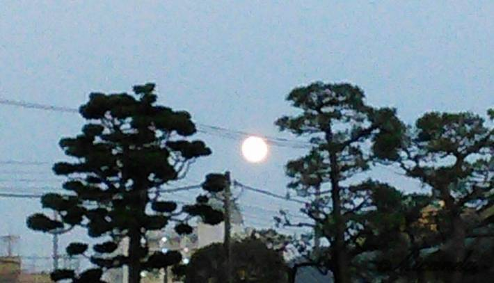 向ヶ丘遊園にあるセテュヌ ボン ニデーの近くで撮影した満月