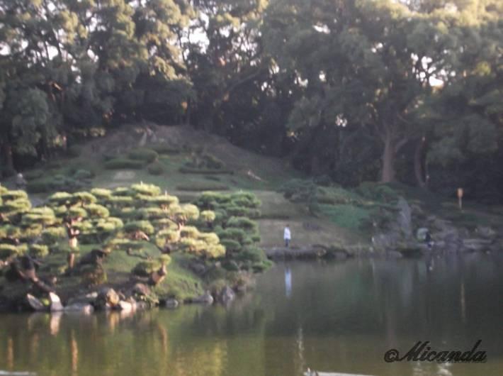 清澄庭園の富士山を模した築山