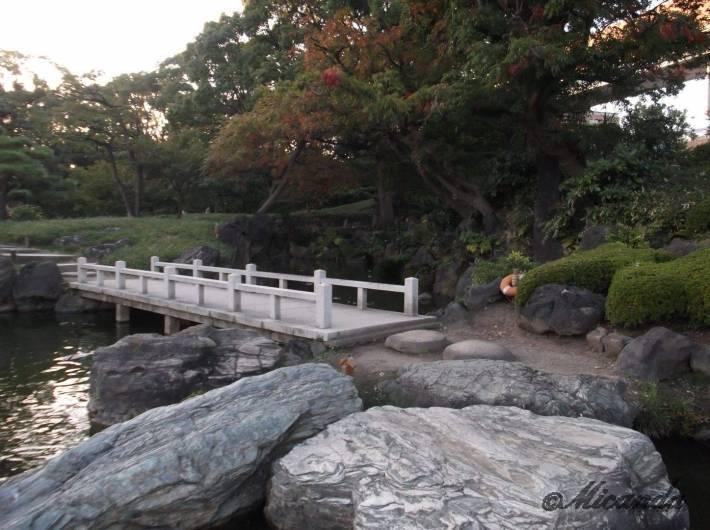 清澄庭園の石橋