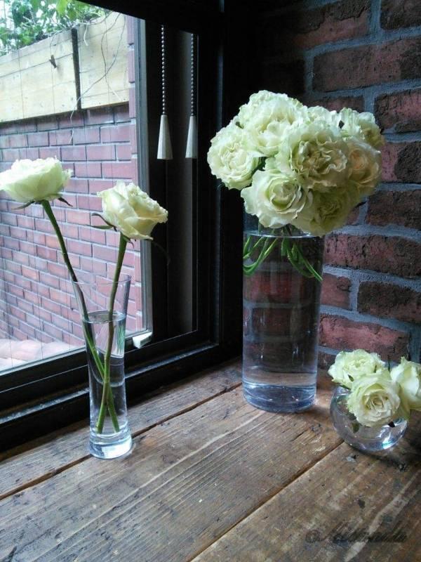 青山フラワーマーケット ティーハウス南青山本店の外が見えるカウンター席に生けられた白バラ