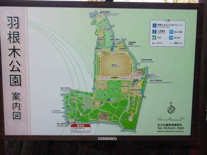 梅が丘駅にある羽根木公園