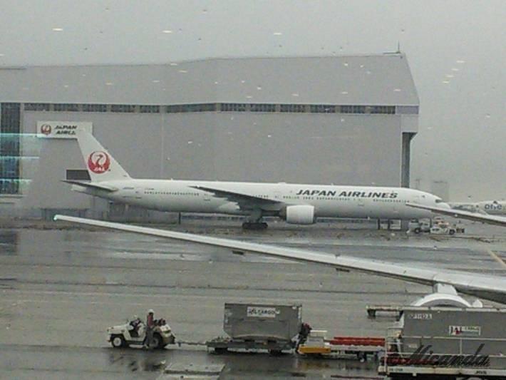 羽田空港での飛行機(JAPAN AIRLINES)